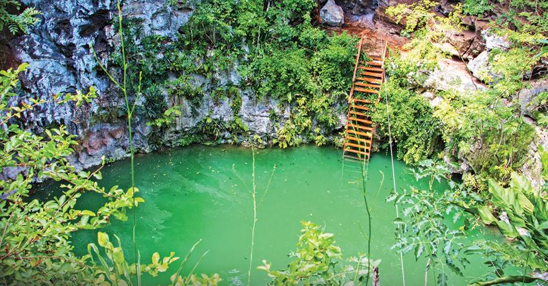 El complejo Los 7 Cenotes le ofrece a sus visitantes experiencias personalizadas de aventura