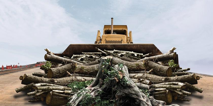 El Peribús de Guadalajara, podría tener afectaciones ambientales importantes