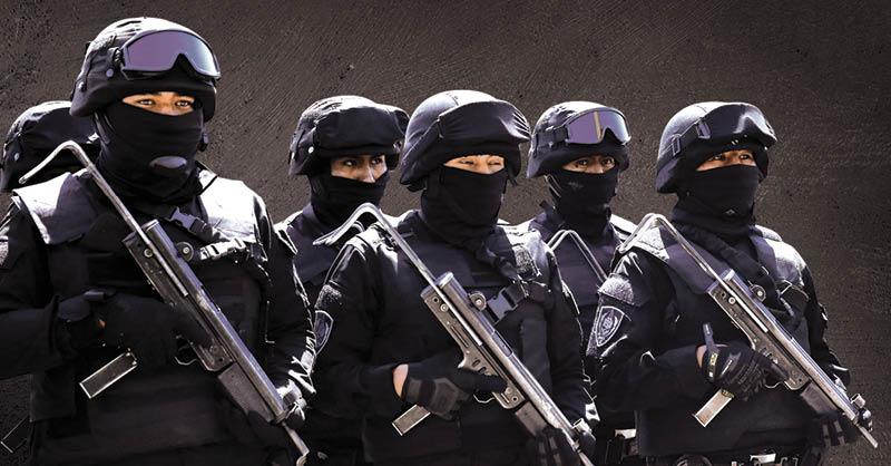 El gobierno interino de Bolivia apostó por la creación del Grupo Antiterrorista