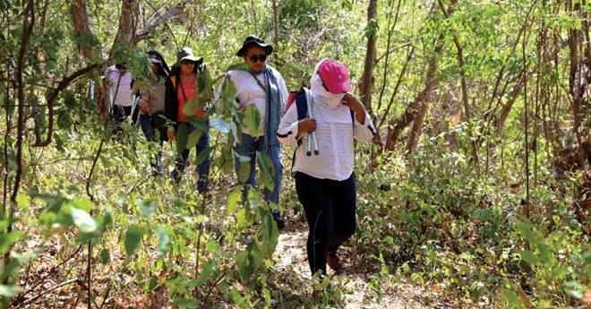 Integrantes del Colectivo de familiares de Desaparecidos buscando fosas en Acapulco, Guerrero.