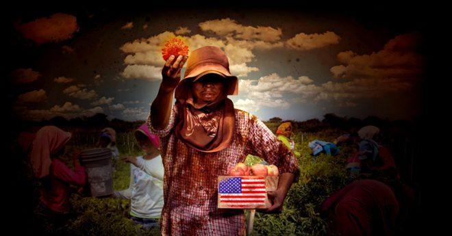 Los jornaleros mexicanos que trabajan el campo en Estados Unidos se enfrentan a una dura realidad