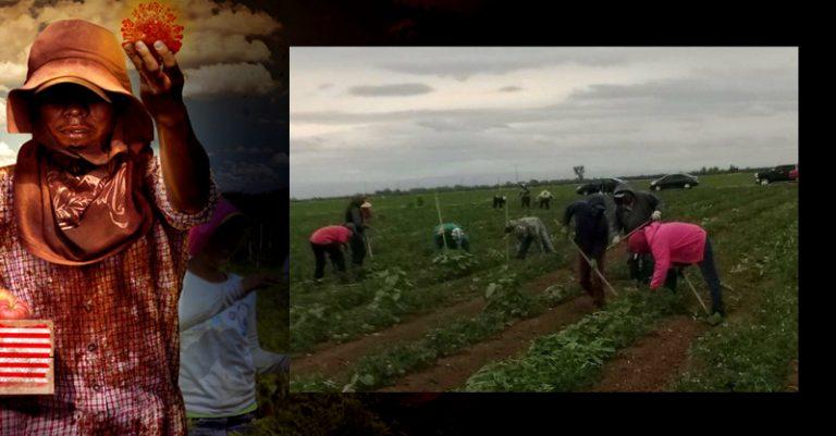 Activistas en pro de los derechos de los trabajadores del campo