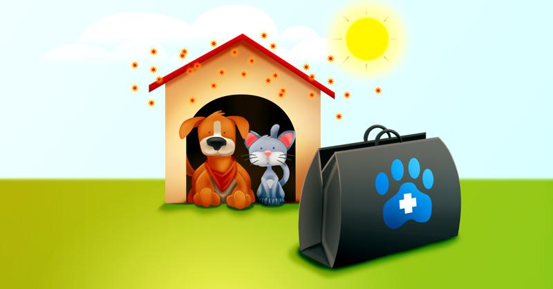 Desde que comenzó el confinamiento, veterinarios han percibido una baja en sus consultas y ventas