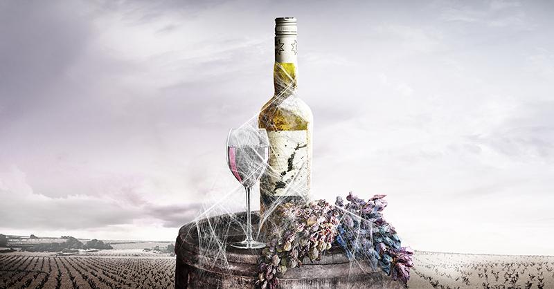 Los productores de vino están pasando por un mal trago en esta pandemia