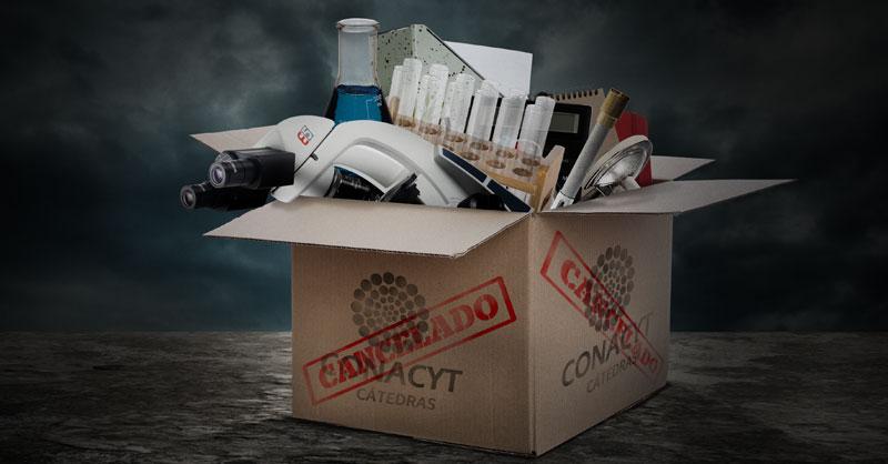 Jóvenes investigadoras que eran parte del programa Cátedras CONACyT exigen ser reinstaladas