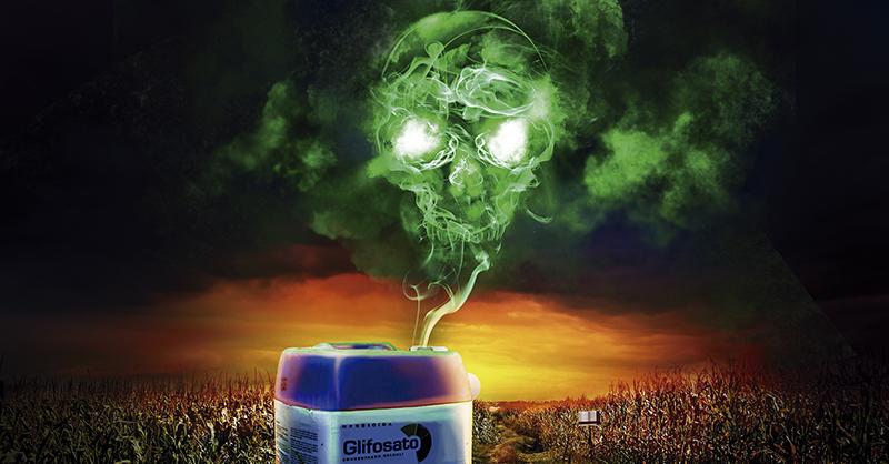 Las dependencias del estado carecen de programas para monitorear el uso de glifosato