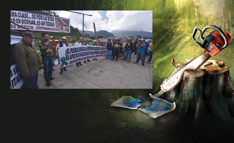 Las autoridades a menudo capturan con acusaciones de delitos ambientales a campesinos e indígenas