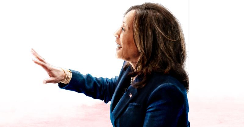 Kamala Harris ha sido primordial para el presidente, sobre todo por su liderazgo