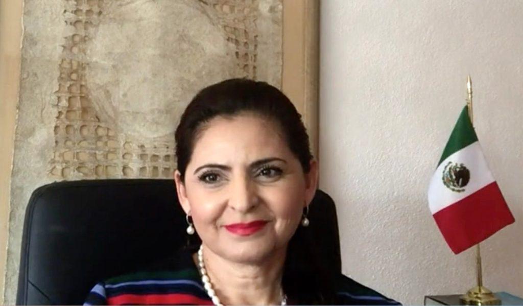 Mónica Soto Fregoso, quien propone ordenar al INE que no sancione al michoacano con la pérdida de la candidatura