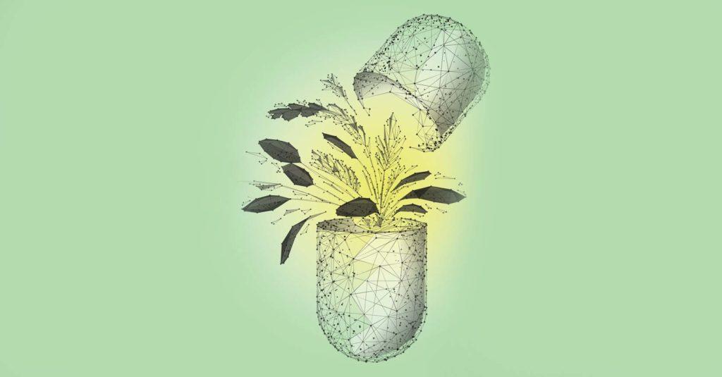 El conocimiento de las plantas medicinales y la herbolaria es milenario