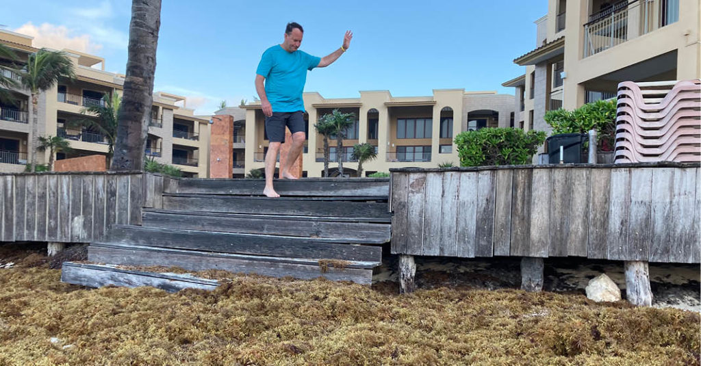 Junto con el mar turquesa y la arena blanca, el sargazo en Playa del Carmen, Quintana Roo, ya forma parte del paisaje diario