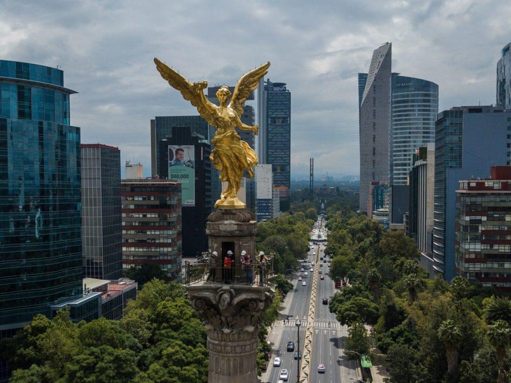 UNAM halla en aire de CDMX comunidad fúngica causante del hongo negro… ¿Qué significa?