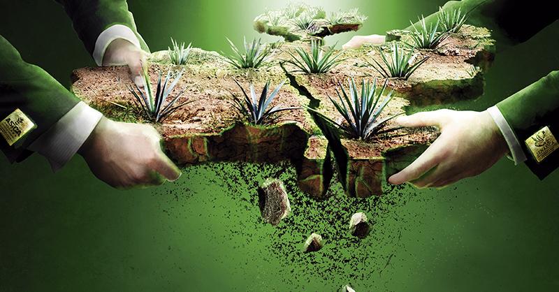 El Gobierno de Jalisco invadió competencias federales con la creación de su Agencia de Sanidad, Inocuidad y Calidad Agroalimentaria (ASICA)