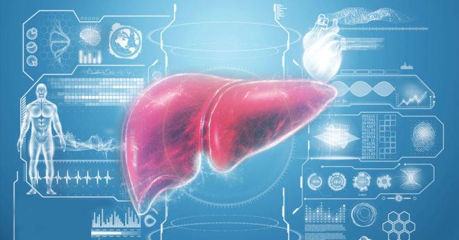 La hepatitis viral es una de las enfermedades infecciosas más extendidas y graves del mundo, por ello, cada año, se impulsan esfuerzos