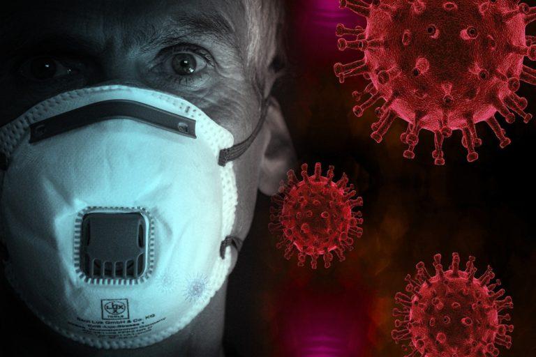 UNAM: Sólo se ha descubierto 0.1% de enfermedades transmitidas de animales a humanos