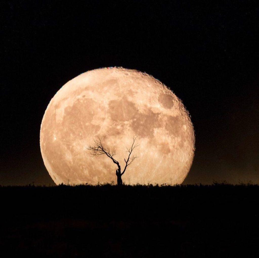 La asombrosa 'Luna de maíz' iluminará el cielo mexicano esta semana; así la podrás ver