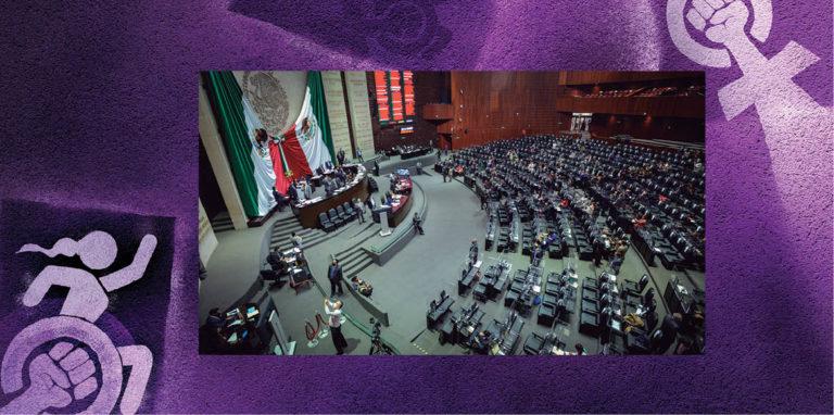 Aunque ya han habido en otras legislaturas diputados y senadores con discapacidad, este año llegaron a través de acción afirmativa