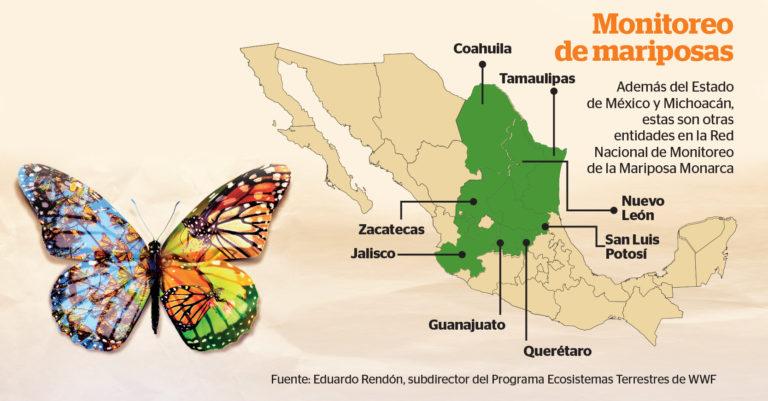 la mariposa monarca tiene dos particularidades a diferencia de otros polinizadores