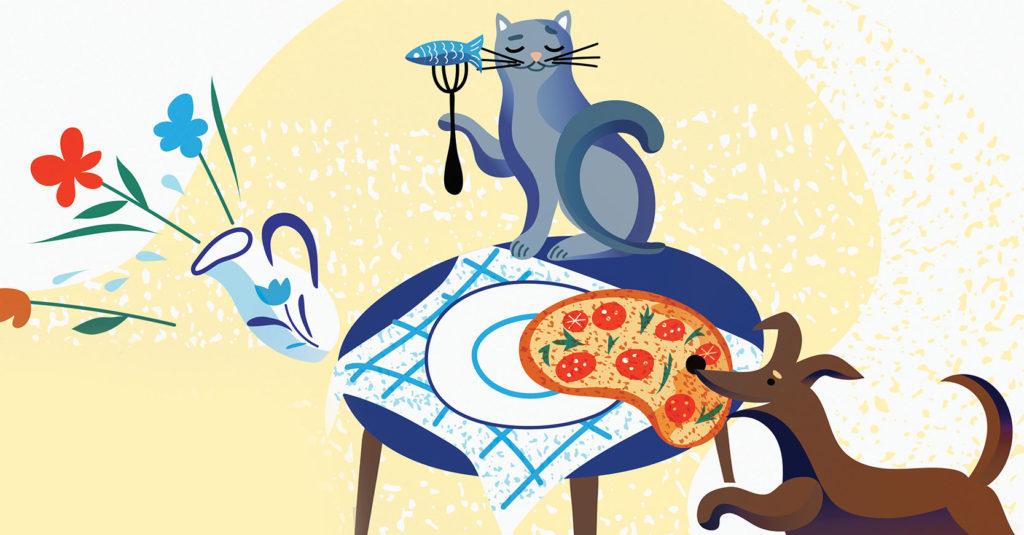 Una mala alimentación puede ocasionar severos problemas de salud a las mascotas